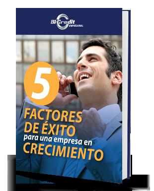 cinco_factores_de_exito.png