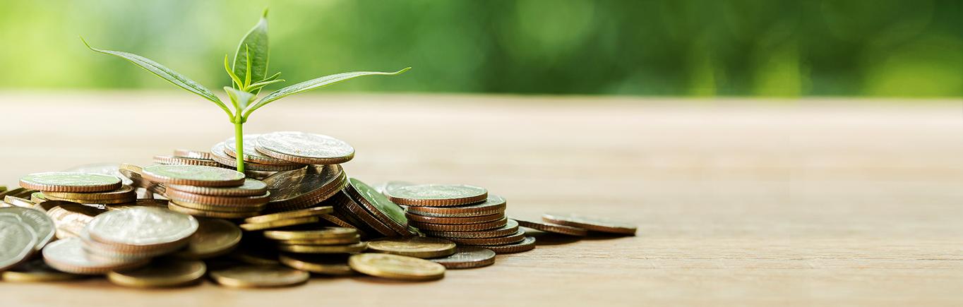 Capitaliza tu emprendimiento con estos tips