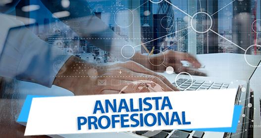 RRHH_ANALISTA_PROFESIONAL