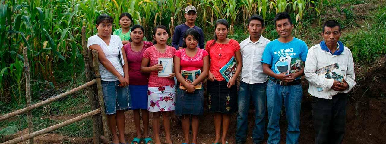 El analfabetismo en Guatemala - Banco Industrial