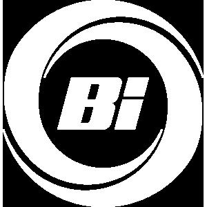 Blog Bi